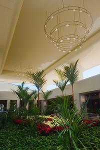 Are those poinsettias in the Waikoloa Beach Marriott's lobby?