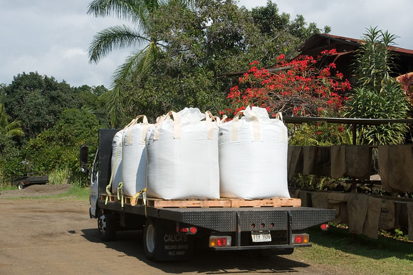 Each of the large bags on this truck contain 1,000 pounds of 100% Kona Coffee