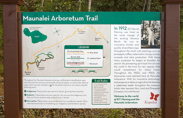 Valerie has been very excited about the recently opened Maunalei Arboretum Trail, the first of over 100 miles of planned walking and hiking trails throughout the Kapalua Resort's 23,000 acres