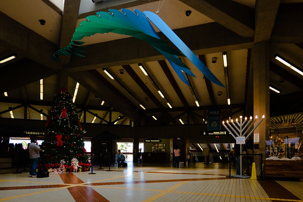 The terminal at Kahului International Airport is decorated for the Holiday Season...easy to forget that Christmas is just a week away when you're on the Hawaiian Islands