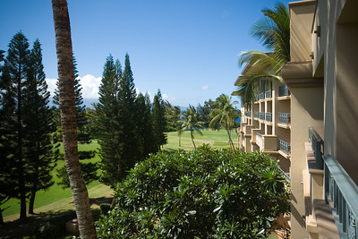 Garden view room...but we can see bits of ocean and Molokai through the palm trees