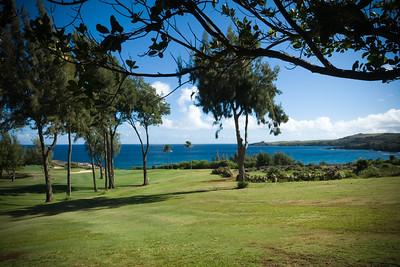 Honokahua Bay (near The Ritz-Carlton, Kapalua)