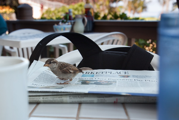 ...and reads the newspaper while I finish my pancakes