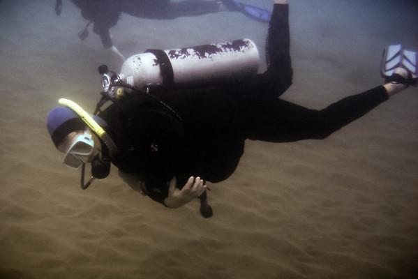 Strange looking fish lurk off of this reef