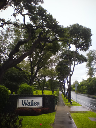 Back to Wailea