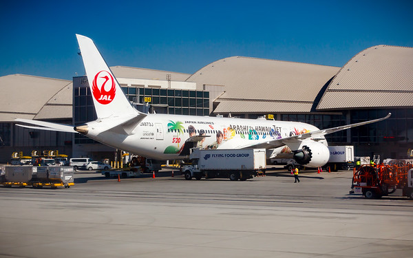 Apparently Arashi is a boy band from Japan...a livery on a Boeing 787-9 Dreamliner