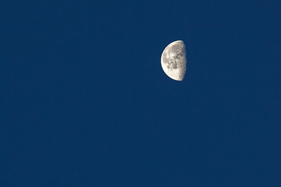 I manage to capture a REALLY clear shot of the moon with the DSLR
