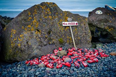 Stones painted as ladybugs for Marek, Akranes, Iceland.