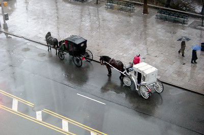 Ritz (view) - horse carriages (morning)