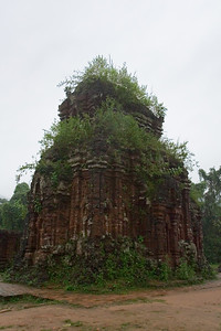 Though the ruins are stone, these temples were originally constructed out of wood (a fire in the late 16th century forced the Cham people to rebuild using some kind of brick)