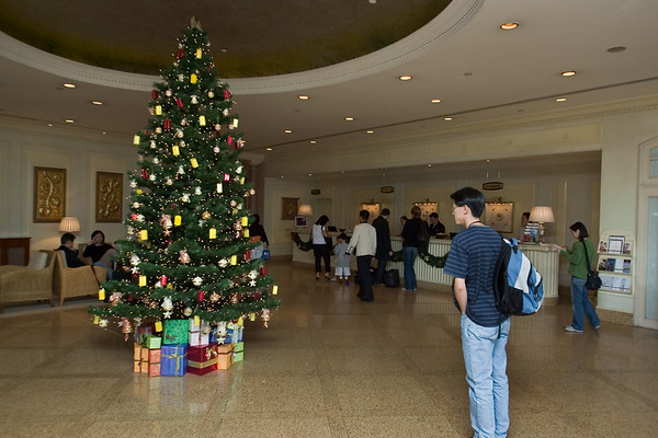 There's a Christmas tree in the lobby