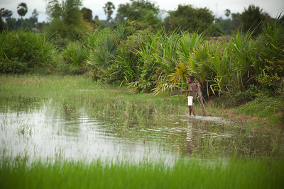 A child carrying a bucket smiles as he wades through the wet fields