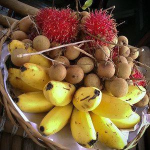 Our guide presents a plate of fruit grown on the delta including those mini-bananas we love so much, lychee, and chôm chôm (rambutan).