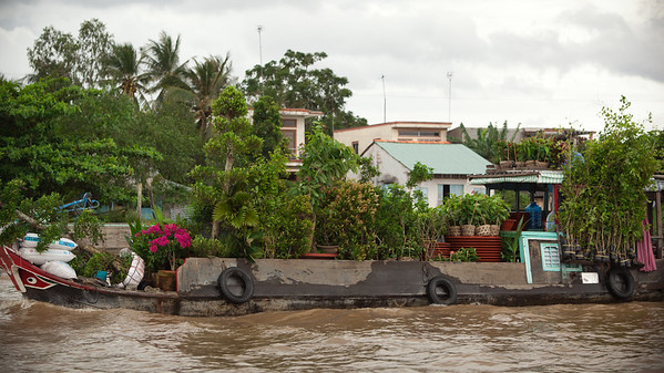 A boat transporting plants is hard to spot...it blends in with the surroundings