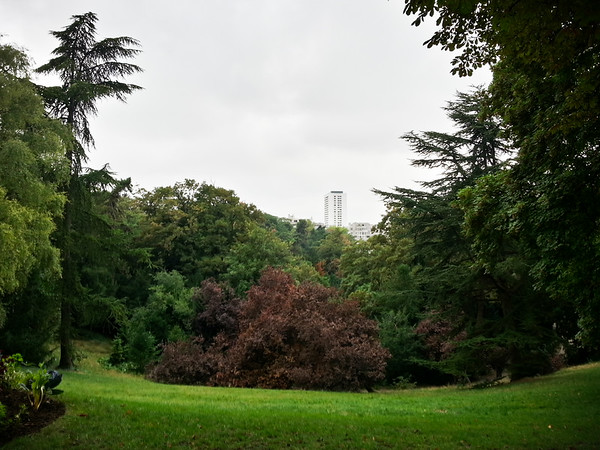 We continue our run around the permieter of the park