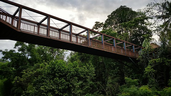 We crossed this bridge when checking in yesterday.  It serves as a shortcut from where our room is located and the resort's main facilities (Lobby, Fitness Center, Spa, and Ayung Terrace, one of the resort's restaurants)
