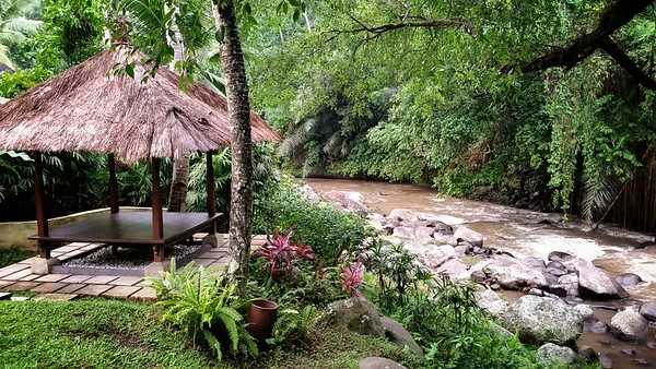I have run down to the Ayung River...which serves as the northern to western boundaries of the resort's property