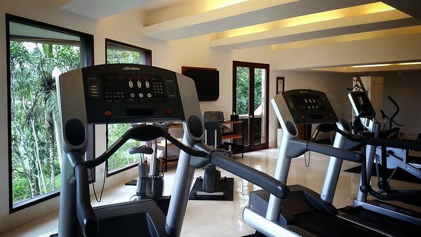 DAY 2 (continued) - Unless I am mistaken, the last time I used a treadmill was at La Résidence d'Angkor in Siem Reap, Cambodia.