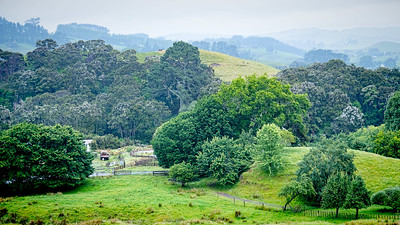 Landscape near the Hilly House AirBnB in Karapiro, NZ.