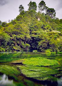 Putaruru – Blue Springs