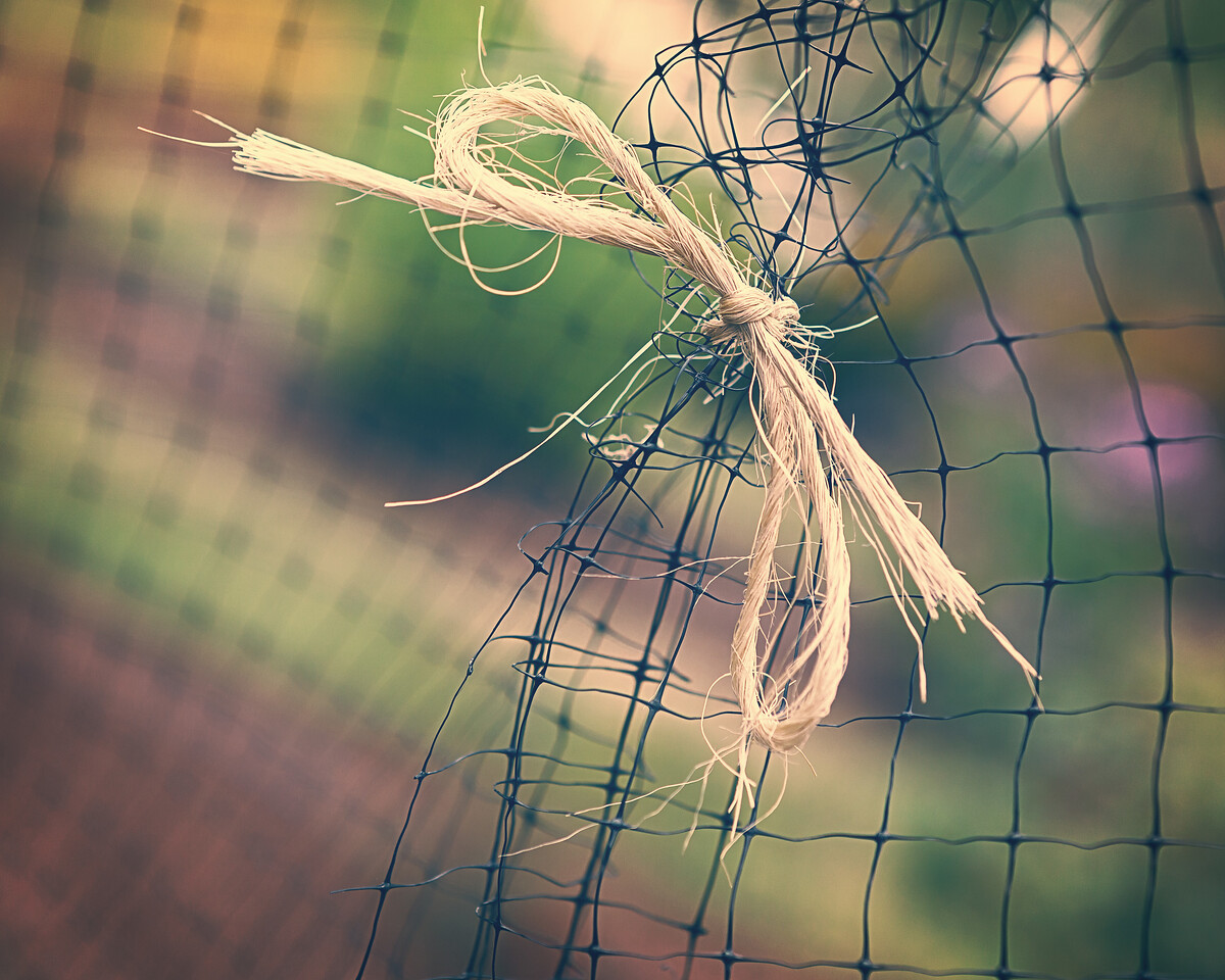 Untie Me
