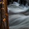 Smoky Mountains 9 1114