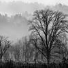 Smoky Mountains 14 1114