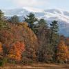 Smoky Mountains 11 1114
