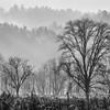 Smoky Mountains 18 1114