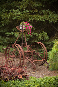 Another piece of farm equipment or simply a display stand for flowers?