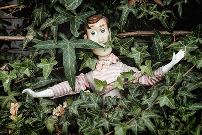 Dirty Woody In The Bushes