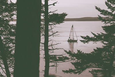 A sailboat seen from Washington Park heads back to port in Anacortes, Washington.
