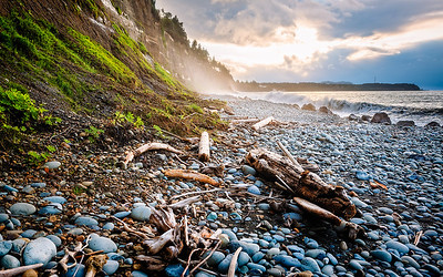 A Good Place to Gather Driftwood