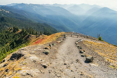 Hurrican Ridge – Olympic State Park