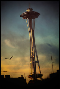 Space Needle and Seagull