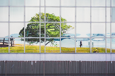 Reflections from Olympic Sculpture Park