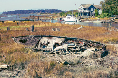 A boat lays rotting in a grassy marsh area near Edison, Washington.