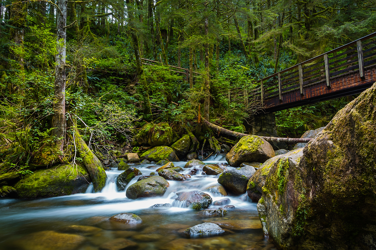 Crossing the North Fork of the Wallace River