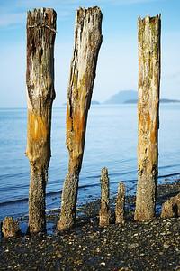 Padilla Bay, WA