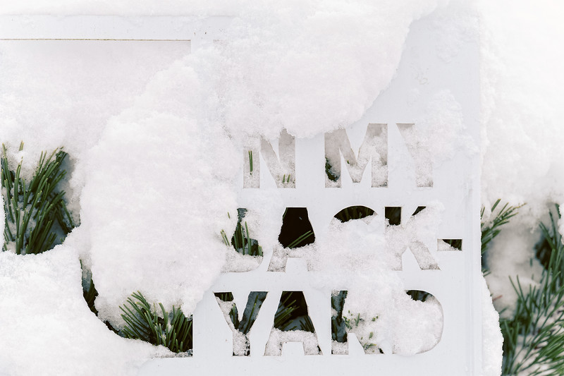 Snow In My Back Yard