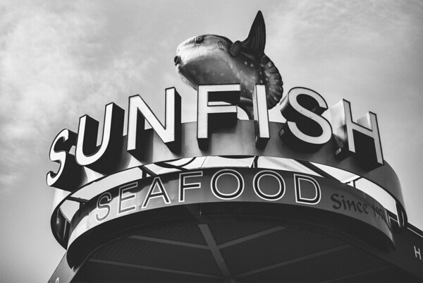 Sunfish Seafood - Since 1979