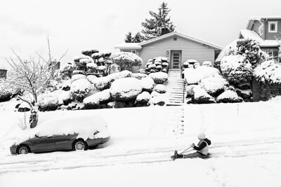 A young girl takes a sled ride down a West Seattle street.