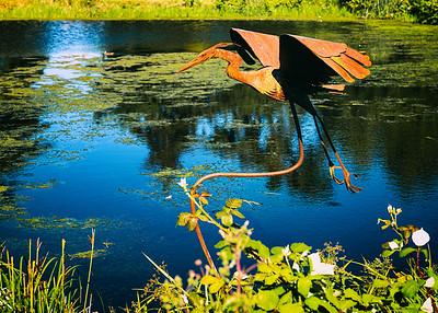 Blue Heron sculpture, Greenbank Farm