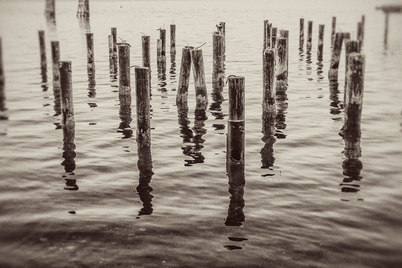 Pilings, Whidbey Island