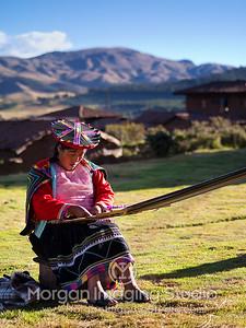 Peruvian Weaver
