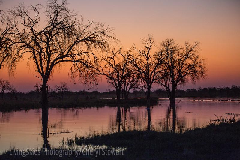 1609_Botswana_122