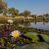 1609_Botswana_214
