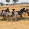 1609_Botswana_658