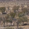1609_Botswana_294-2