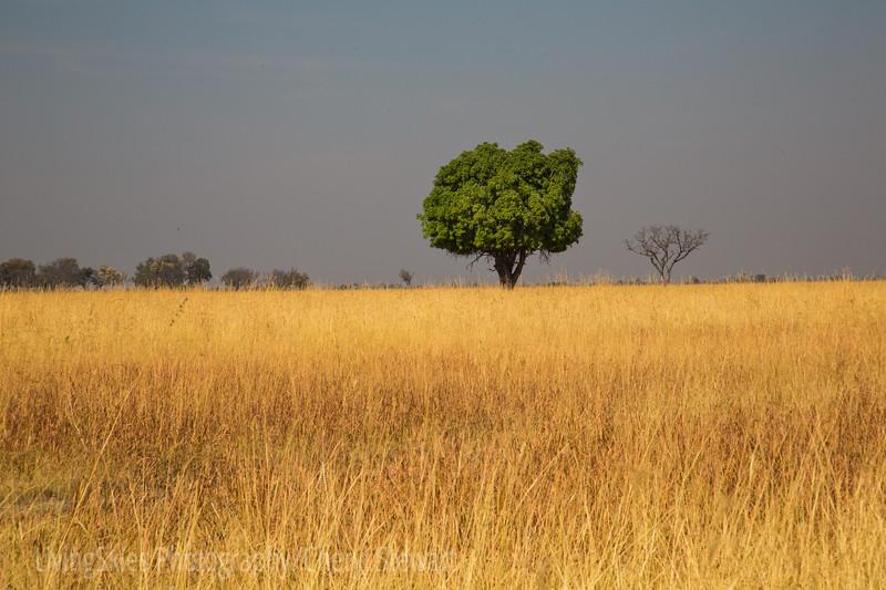 1609_Botswana_084